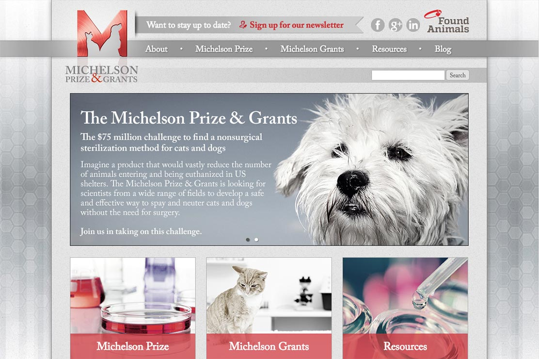 Michelson Prize & Grants Website Redesign